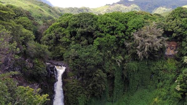hawaii-410128_960_720